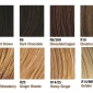 hair-do-braided-color-chart