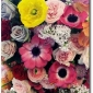 jil-sander-florist-seen-on-another-mag