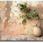 peach-colored-wall-and-potted-greenery-seen-on-pinterest
