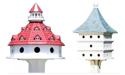 Special Birdhouses-Meranda's Picks