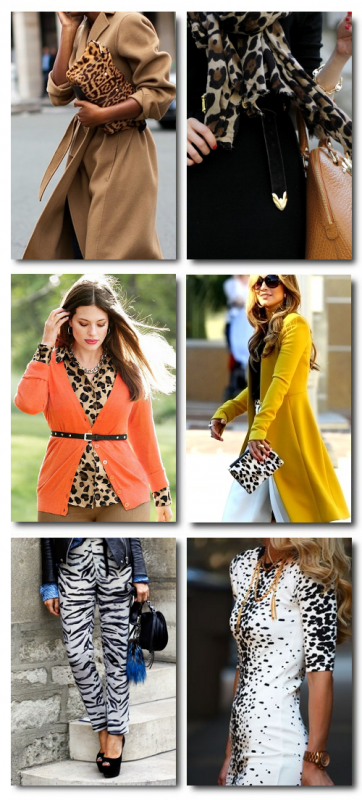 Hot Animal Prints