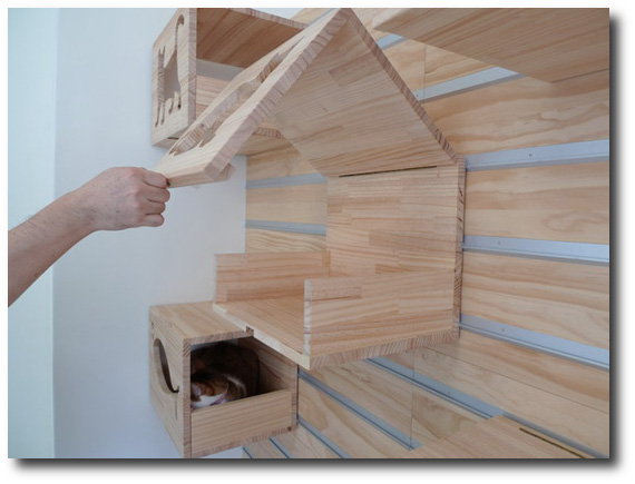 Diy Kitty Condo S And Towers