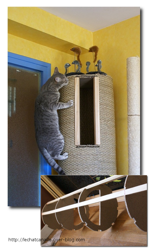 Elaborate Cat Trees